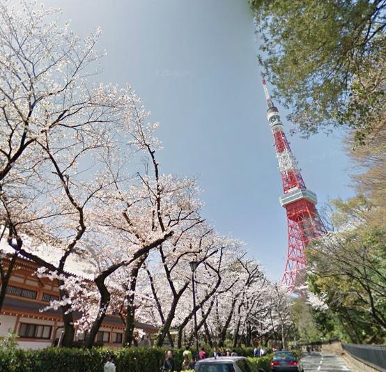 【Googleマップで花見さんぽ】全国の桜の名所がストリートビューで観られます