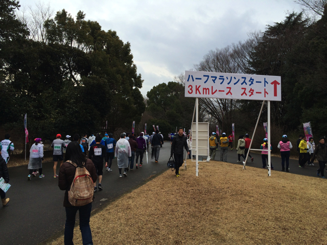 写真 2015-03-01 8 49 58