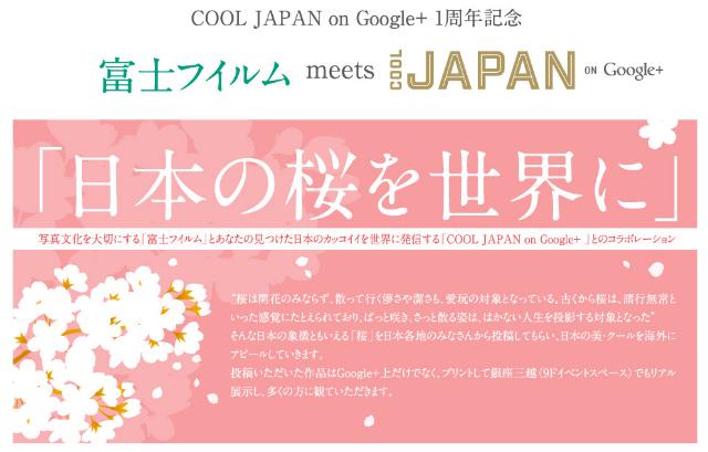 富士フイルム meets COOL JAPAN ON Google  「日本の桜を世界に」   富士フイルム