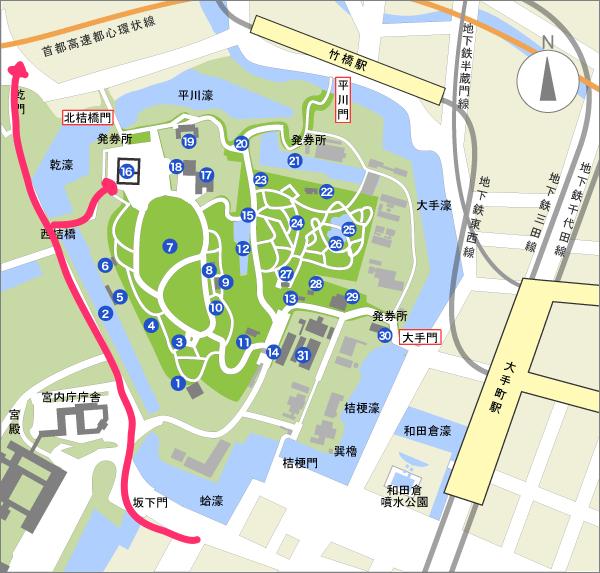 【花見さんぽ】70本以上の桜が並ぶ皇居の乾通りが期間限定公開