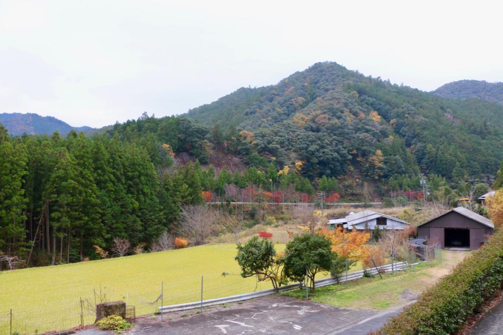 山里民泊みくりから見た山里の風景