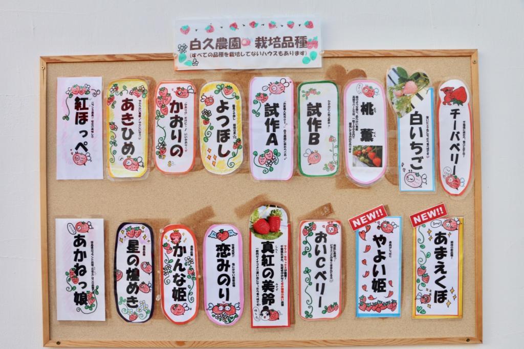 白久農園で栽培されているいちごの品種