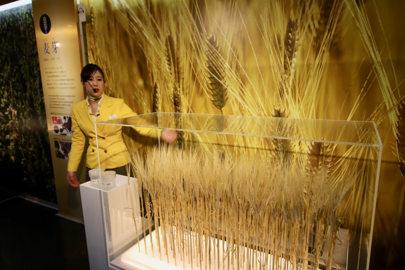 Nijo barley malt