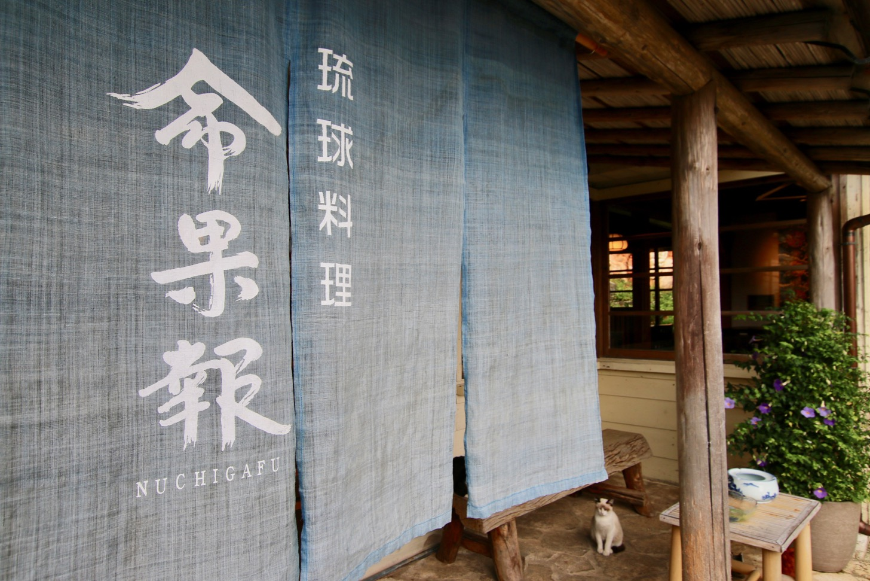 琉球料理ぬちがふう(命果報)入口