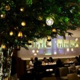 """Keio Plaza Hotel """"Candles Beer Night collaborated with NAKED"""" is held! I have experienced extraordinary dinners colored with projection mapping"""