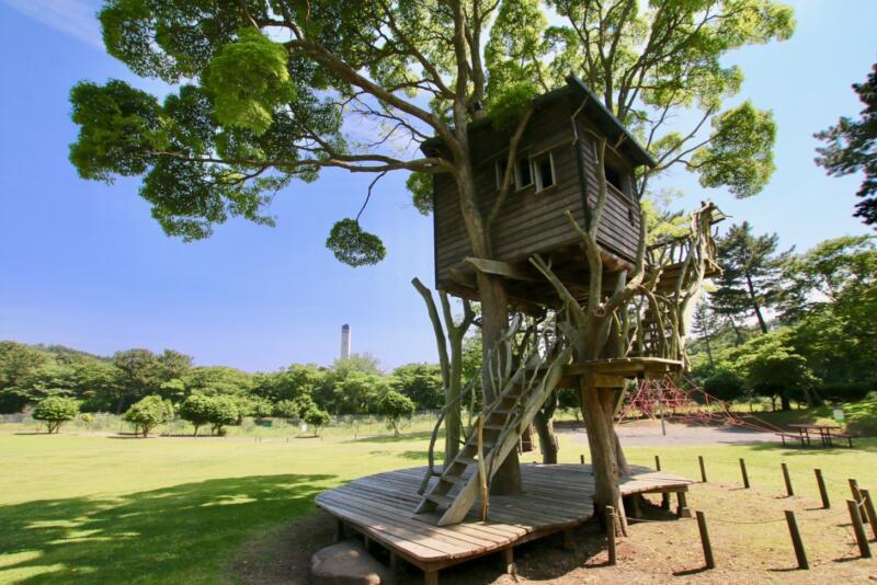 東伊豆町出身で日本を代表するツリーハウスクリエーターの小林崇さんがプロデュースするツリーハウス