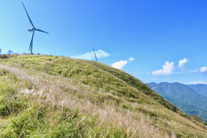 稲取細野高原で秋のすすきイベント 風力発電所