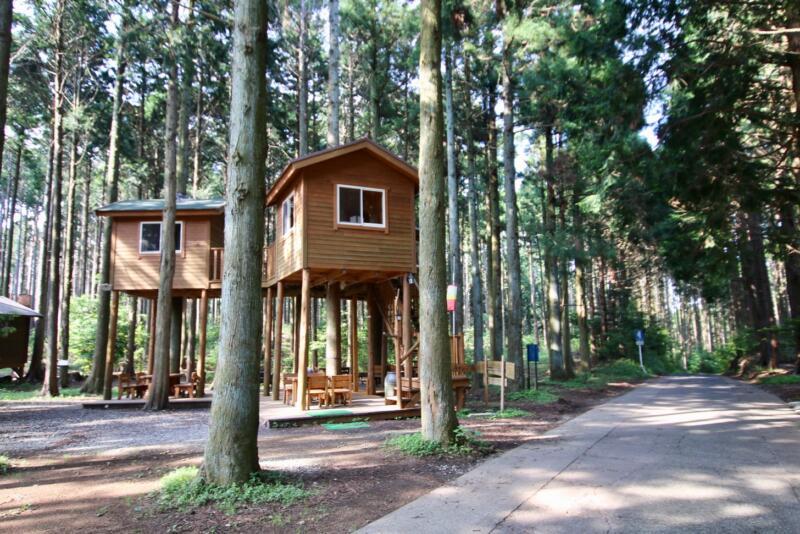 伊豆フライトハウス&ツリーハウス村キャンプ場