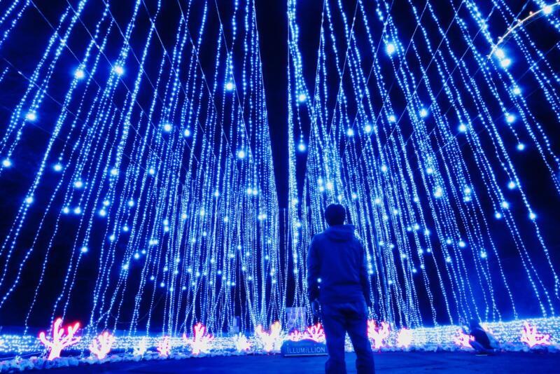 さがみ湖イルミリオン 光のアクアリウム