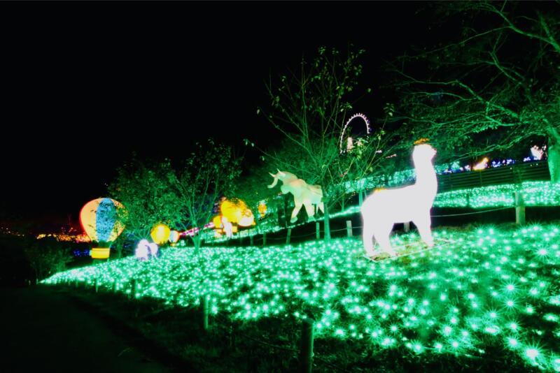 さがみ湖イルミリオン 光の動物園