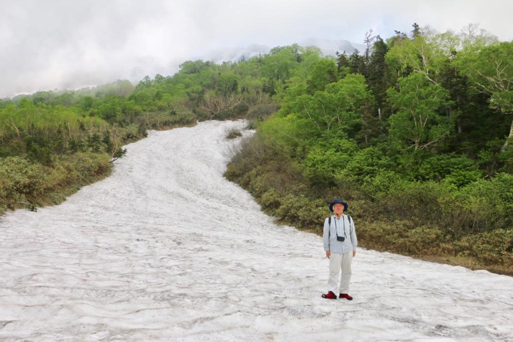 栂池自然園雪渓