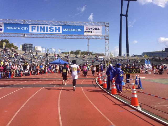 【旅ラン・第31回新潟シティマラソン】ハーフマラソンに挑戦してきました!
