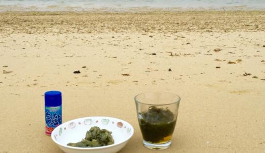 【沖縄県恩納村】海の畑でつるつるシャキシャキのもずくをいただきます!