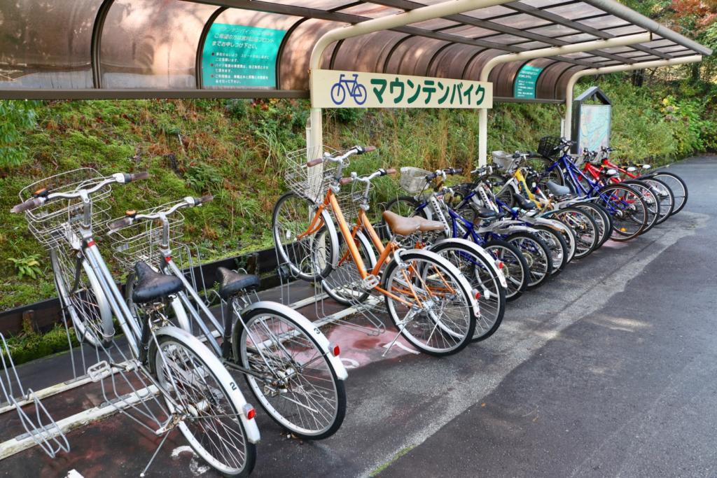 マウンテンバイクのレンタサイクル