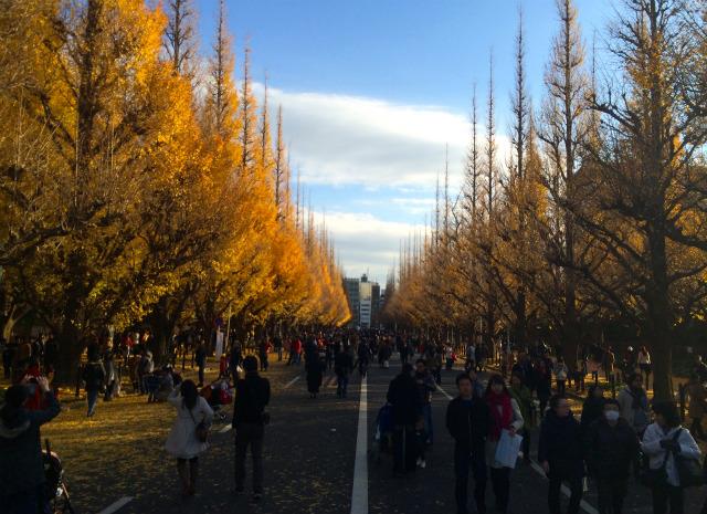 東京散歩ぽ初散歩イベント「おもて散歩ぽ in 神宮外苑」を開催しました! #おもて散歩ぽ