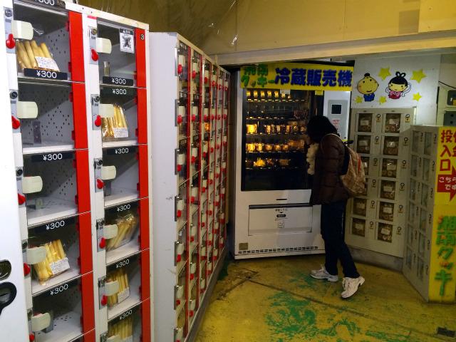 湘南クッキーアウトレット店で販売機を覗く嫁