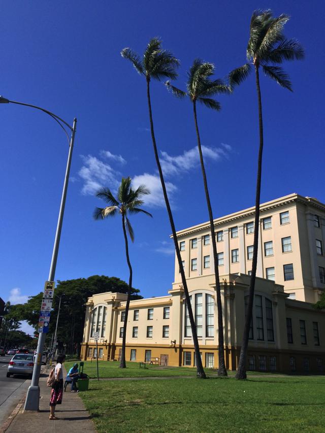 ハワイ州立美術館やセントアンドリュース大聖堂などハワイの歴史散策をするのは絶好のエリア