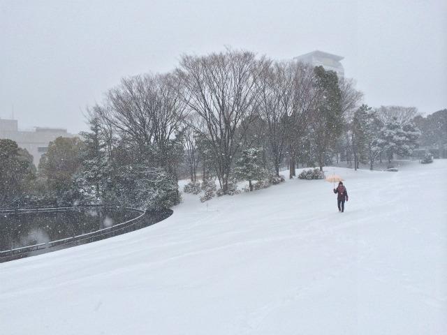 多摩が雪国に