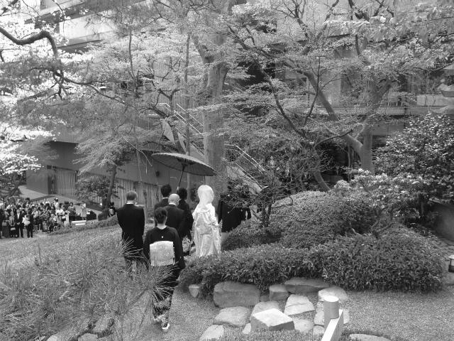 桜は4月5日頃