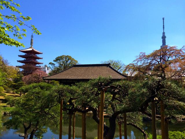 伝法院から五重塔と東京スカイツリー