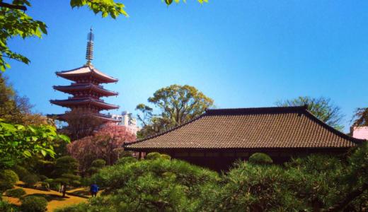 【花見さんぽ】浅草寺の名勝 伝法院庭園が特別公開中