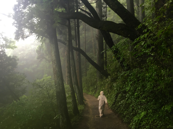 【Oume Sanpo XNUM X day】 In the morning mist, I have been sampling fantastic Mt. Mitake [PR]