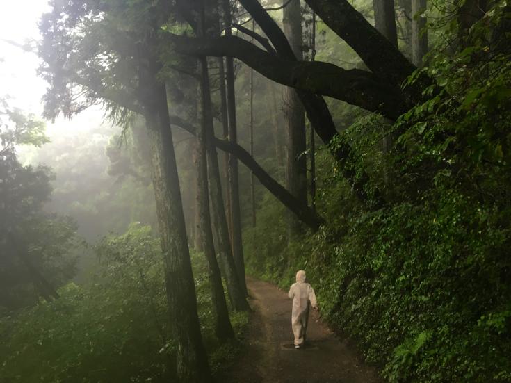 【青梅さんぽ1日目】朝霧の中、幻想的な御岳山をさんぽしてきた【PR】