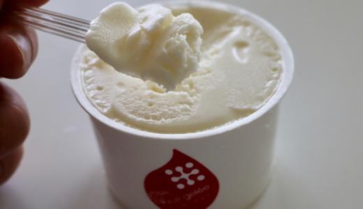 米でできた新食材「米ゲル(ライスジュレ)」が日本の食の未来を救う? グルテンフリーなクリームシチューを作ってみた #ライスジュレ #米ゲル
