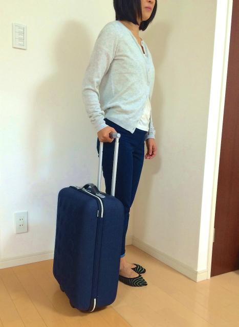 【1泊旅行に最適】イケアのキャビンバッグ「UPPTÄCKA(ウップテカ)」が安くておしゃれでなかなかイイ