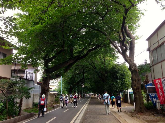 真夏の東京散歩 TOKYOウオーク2013【小平・小金井エリア】