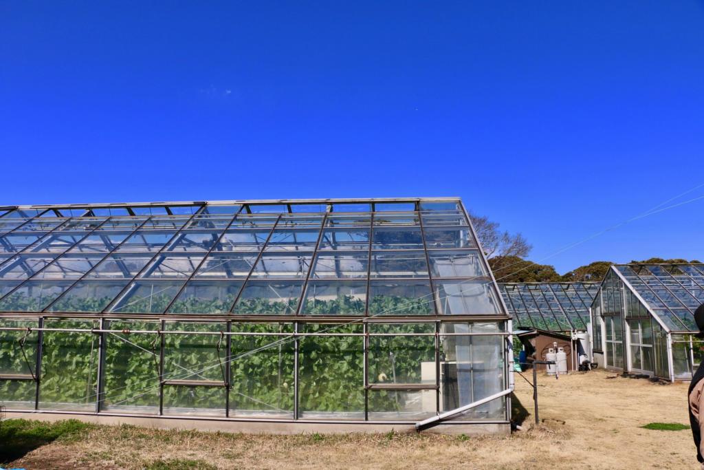 モリタ農園