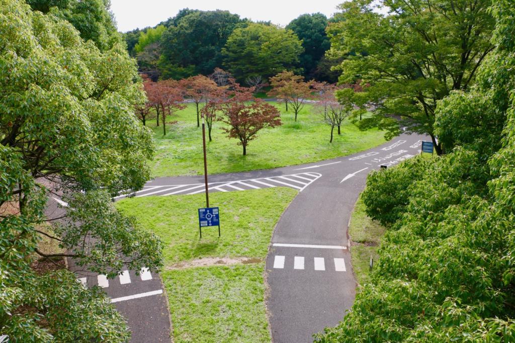 昭和記念公園でサイクリング