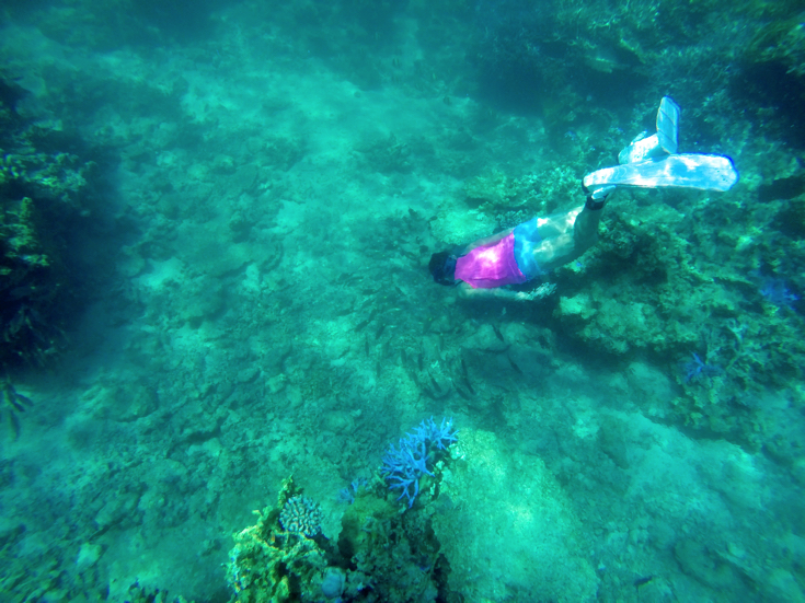 鳩間島バラス島