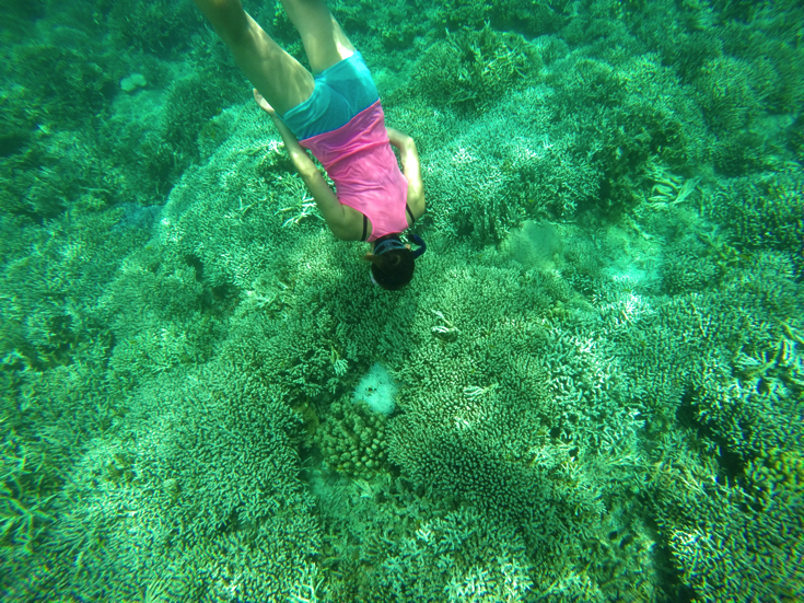 【石垣島から45分】鳩間島・バラス島で日帰りシュノーケリングツアーを体験→素晴らしい世界が広がっていた
