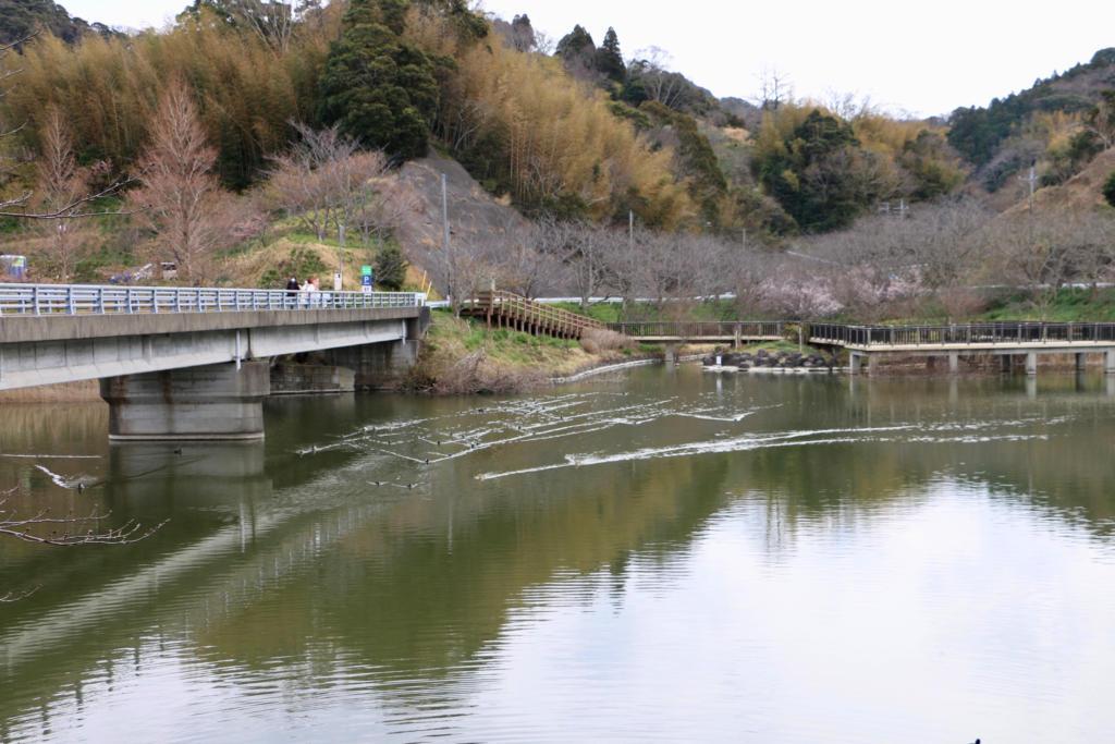 佐久間ダム親水公園