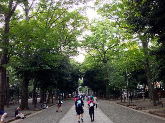 20km完歩して金メダルへリーチ!TOKYOウオーク2013【府中・調布エリア】