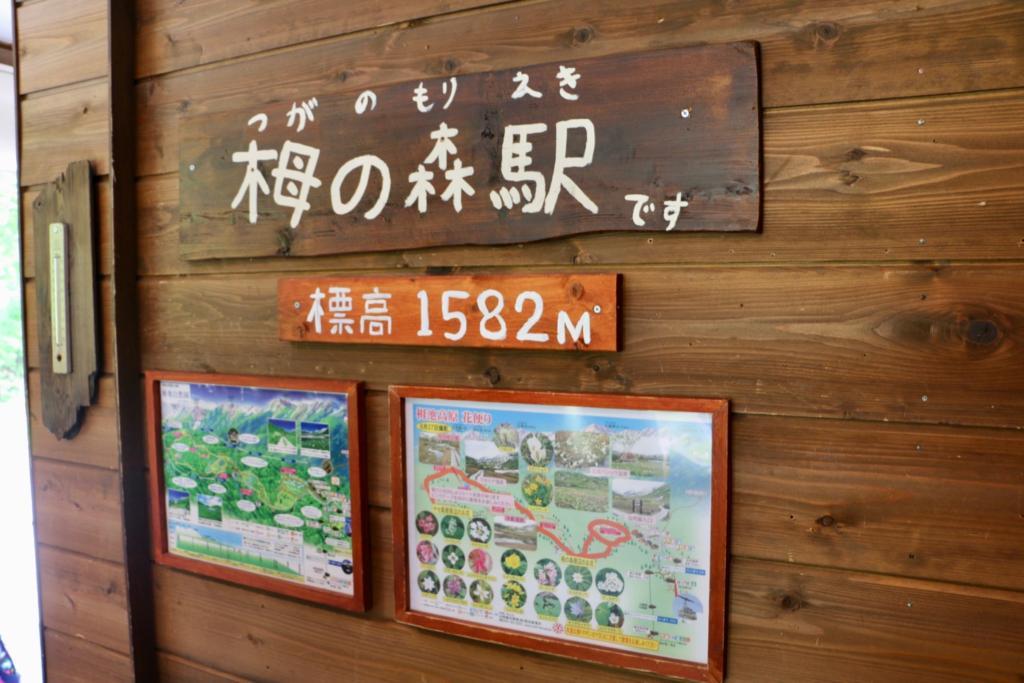 栂池ロープウェイ栂の森駅