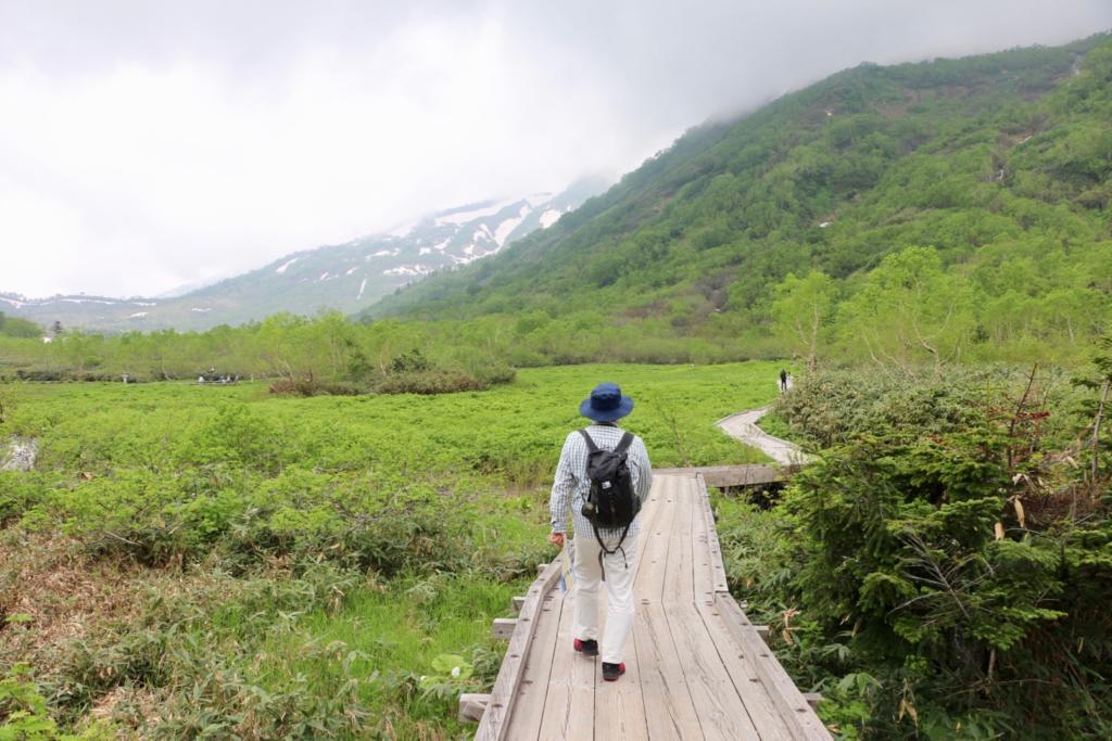 栂池自然公園を歩く