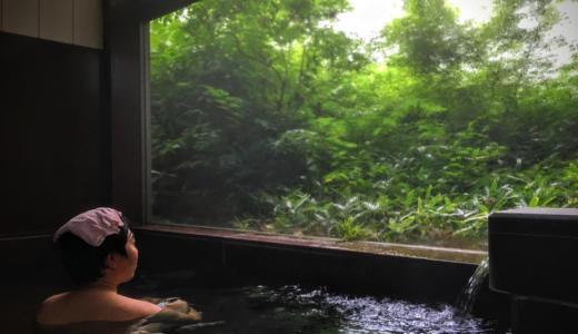 【青梅市】岩蔵温泉郷「蔵造りの宿 かわ村」で食事付き日帰り温泉を堪能してきた【PR】