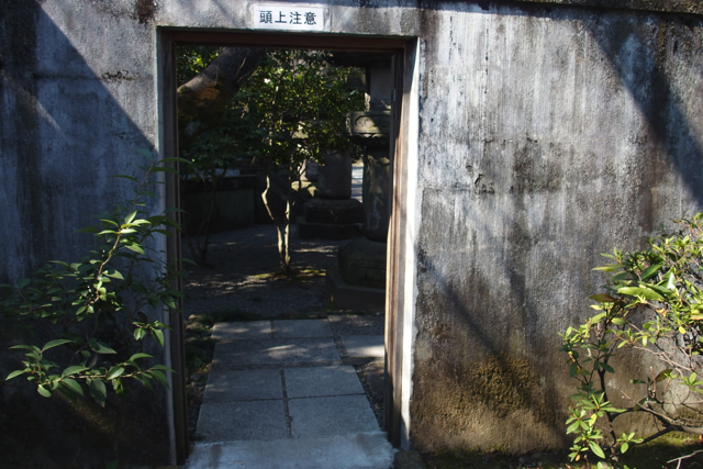 P2150581zojoji tokugawa