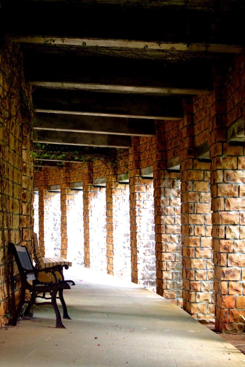 【沖縄県海洋博公園・熱帯ドリームセンター】草木花の楽園はまるでラピュタの世界観!