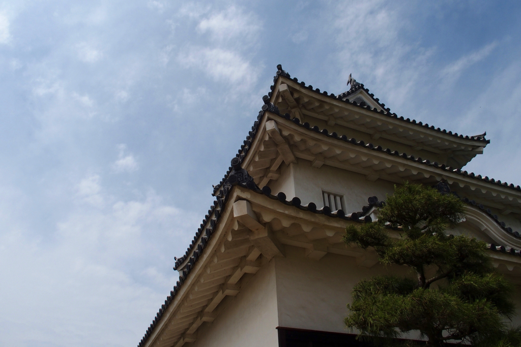[Marugame City, Kagawa Prefecture] I have been to the castle in Marumeme Castle where there are 3 best in Japan