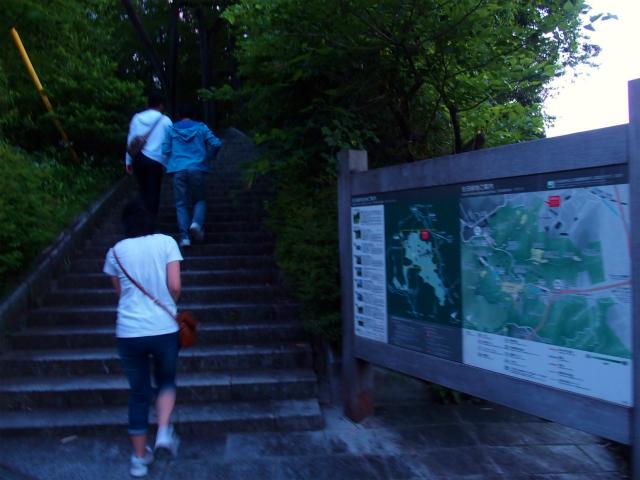 【川崎市向ヶ丘遊園】「生田緑地ホタルの国」に行って来た
