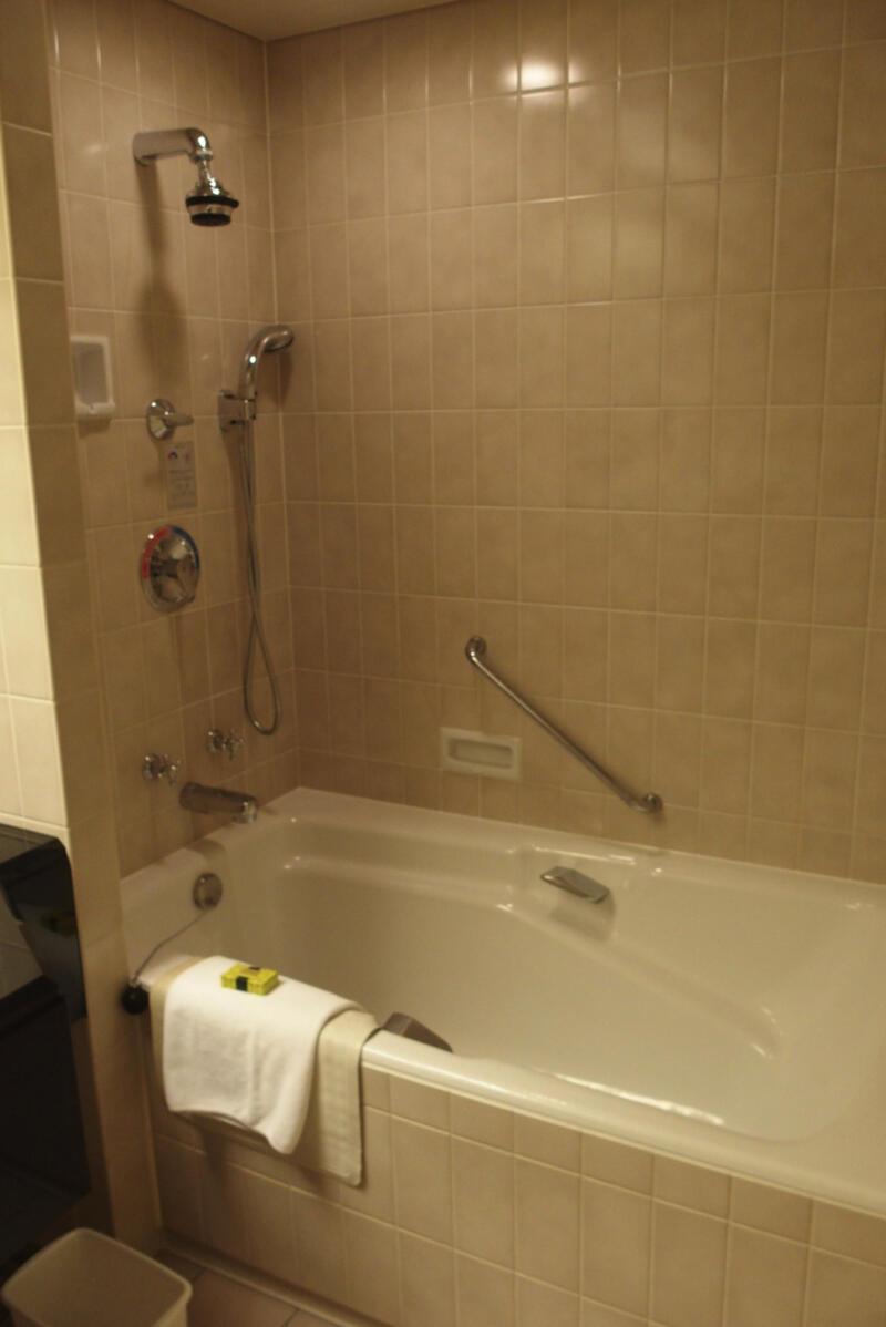 バスルームはトイレと兼用