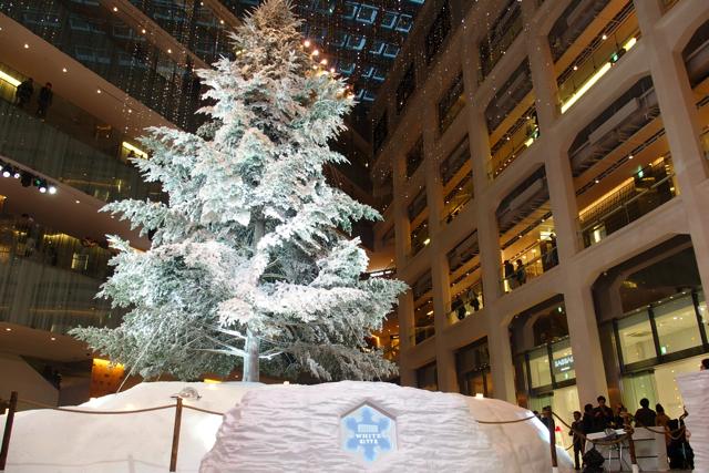 【東京駅丸の内】KITTEと丸ビルのクリスマスツリーを見て来たよ!
