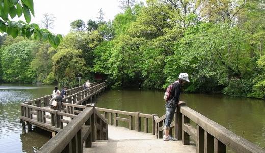吉祥寺さんぽ ジブリ美術館〜井の頭公園さんぽ