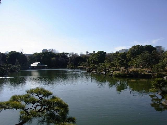 清澄庭園さんぽ 〜野鳥と名石の名勝〜