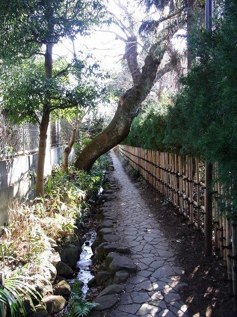 小金井さんぽ ジブリ映画「借りぐらしのアリエッティ」のモデルになった「はけの小路」を歩く