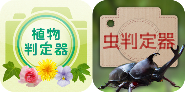 """An iPhone application that determines the name of flowers and insects """"Plant determiner"""" and """"Insect determiner"""""""