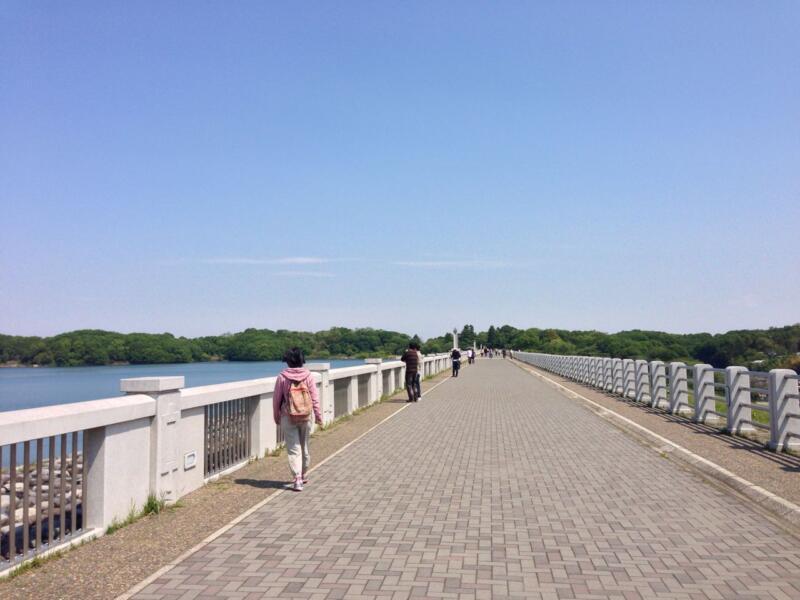 【所沢さんぽ】狭山湖畔からトトロの森を歩く
